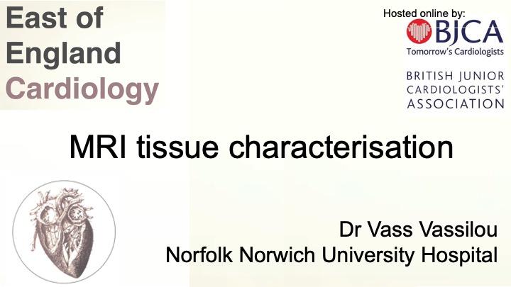 MRI Tissue Characterisation