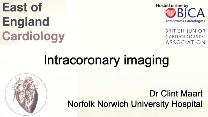 Intra-coronary imaging