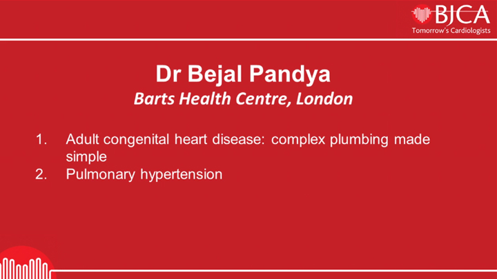 Dr Bejal Pandya